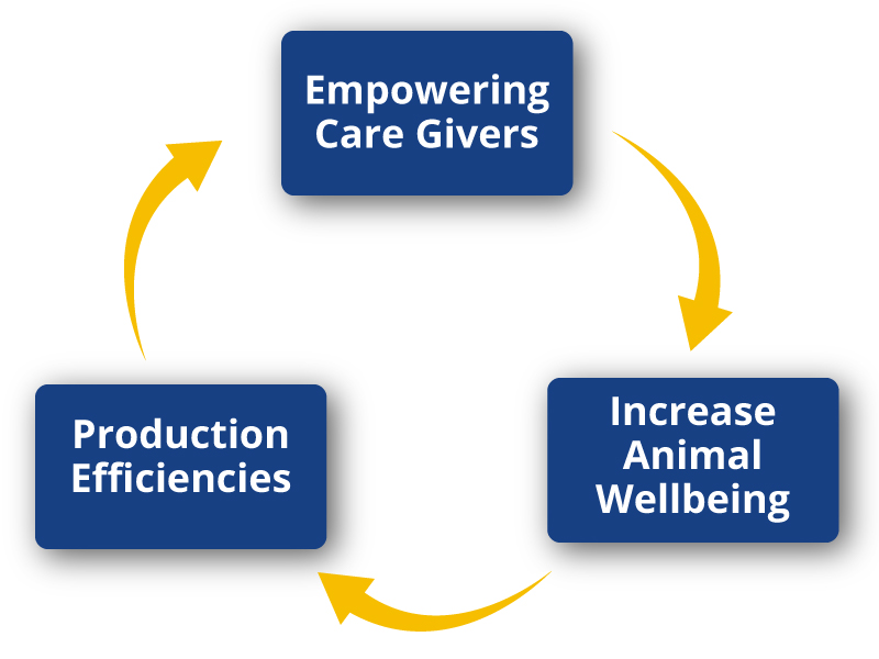 empowering caregivers,increase animal wellbeing, production effiicencies